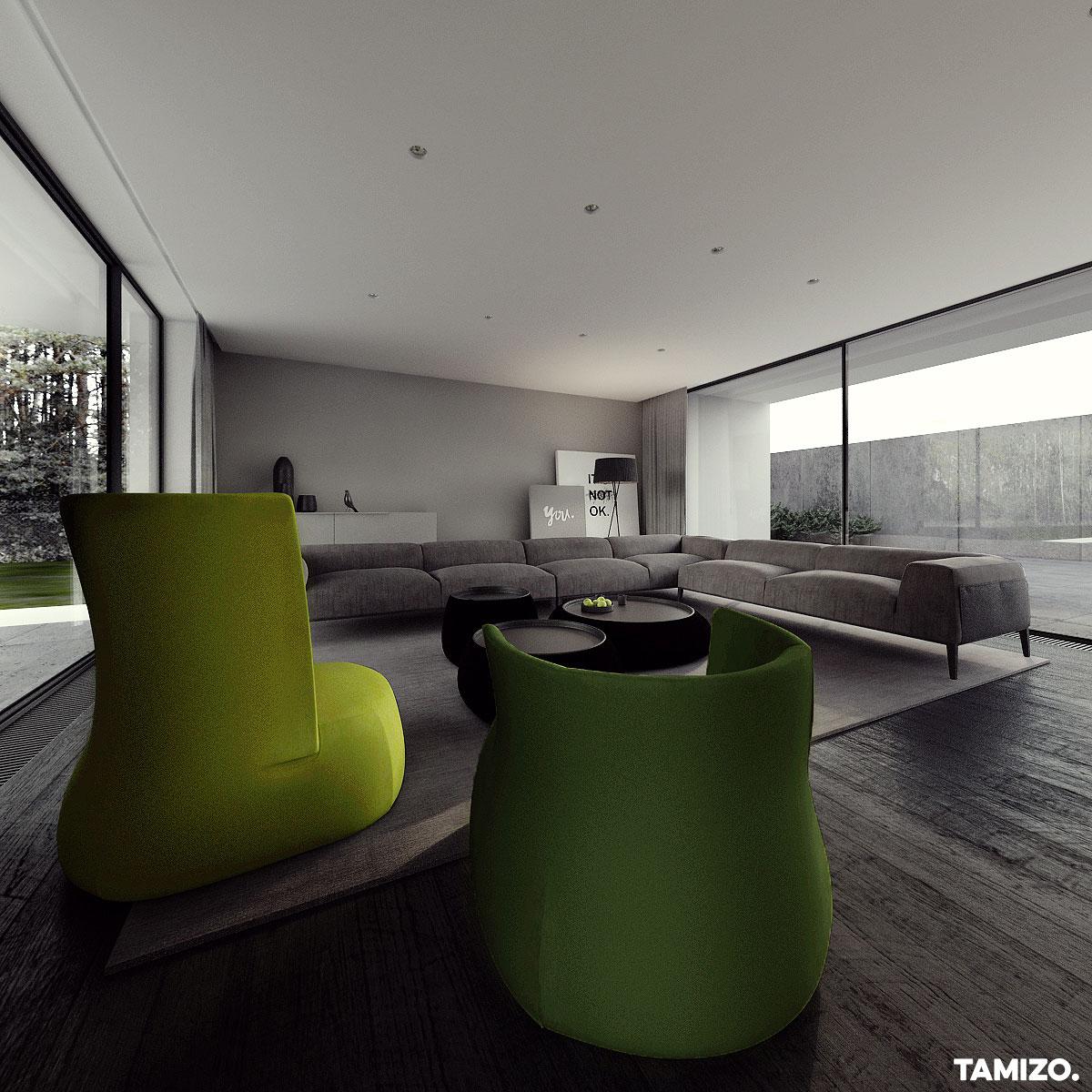 I041_tamizo_architekci_projekt-wnetrz-dom-cz-house-jednorodzinny-pabianice-09